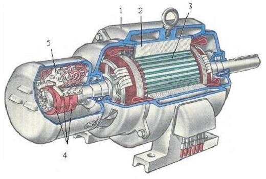 На рисунке представлен асинхронный электродвигатель в разрезе