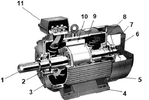 Устройство трехфазного асинхронного двигателя